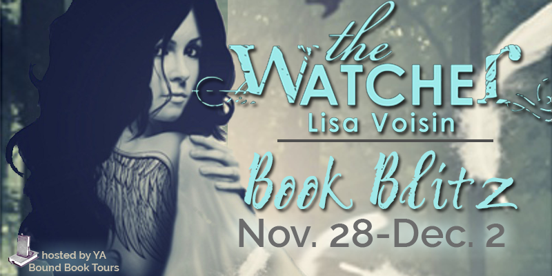 Book Blitz + Giveaway :  The Watcher