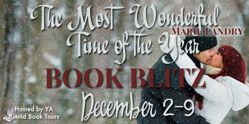Book Blitz + Giveaway – The Most Wonderful Time of the Year