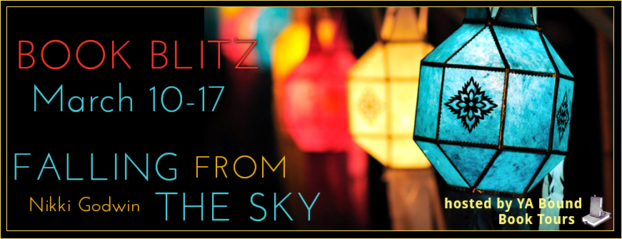 Falling From The Sky – Book Blitz + Giveaway