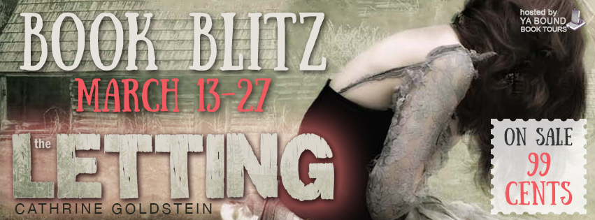 Book Blitz – The Letting
