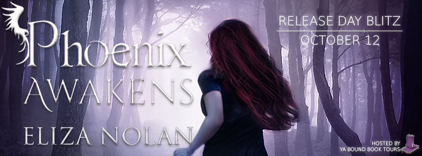 Release Day Blitz – Phoenix Awakens